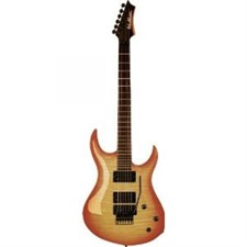 Washburn XMPRO2-FRFHB Electric Guitar